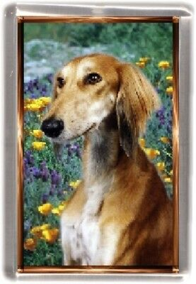 Saluki Fridge Magnet by Starprint - Auto combined postage