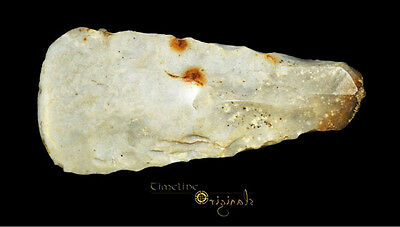 DANISH NEOLITHIC STONE AGE THIN BUTTED AXE axehead tool 025043