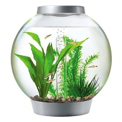 Biorb Baby 15 litre Silver with Standard LED light biorb Coldwater Fish Tank