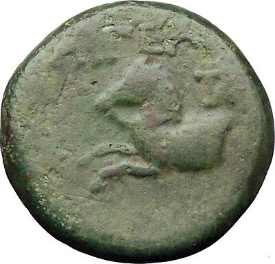 Aigeai in Cilicia 2nd Century B.C. Ancient Greek Coin Tyche Luck Horse  i29897