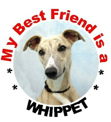 2 Whippet Car Stickers By Starprint - Auto combined postage