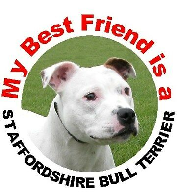 2 Staffordshire Bull Terrier Dog (White) Staffie Car Stickers By Starprint