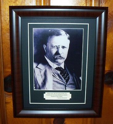 Theodore Teddy Roosevelt Photo & Quote Politics Matted and Framed