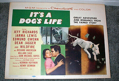 BULL TERRIER original 1955 movie poster IT'S A DOG'S LIFE/JEFF RICHARDS