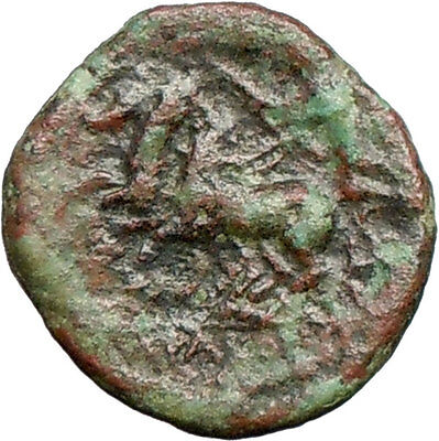 Syracuse in Sicily 212BC Ancient Greek Coin Zeus Nike Victory  Horse  i28112