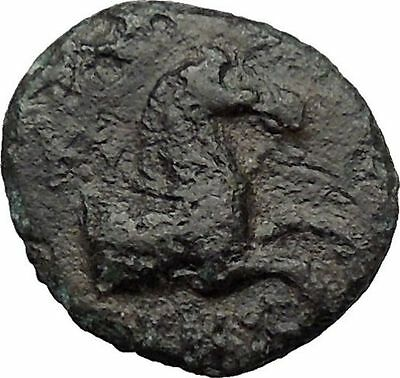Kyme in Aeolis 350BC Horse & Vase Genuine Authentic Ancient Greek Coin  i31340