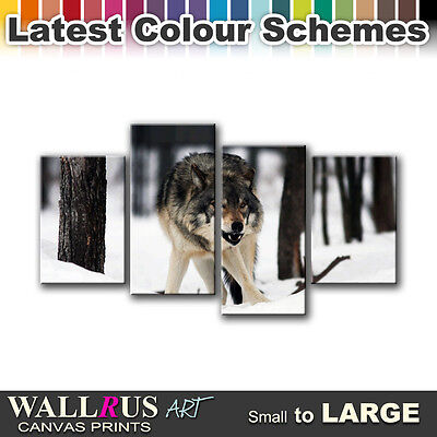 White Wolf Wild ANIMALS  Canvas Print Framed Photo Picture Wall Artwork WA