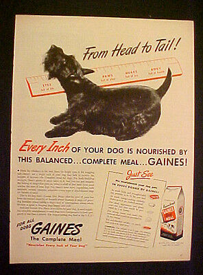 1945 Scottish Terrier Gaines Dog Food Complete Meal 2lb~5lb~10lb Bags Trade AD