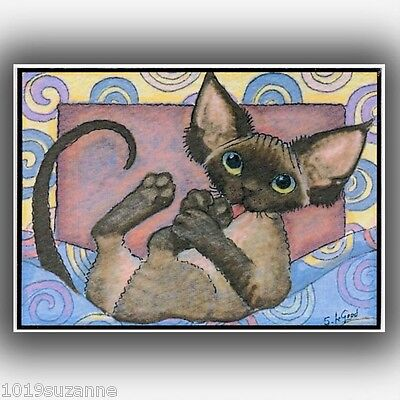 Aceo Limited Edition Chocolate Devon Rex Cat  Painting Print By Suzanne Le Good