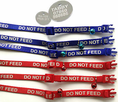 """CAT COLLARS with REFLECTIVE """"DO NOT FEED"""" WRITING, with or without ENGRAVED TAG"""
