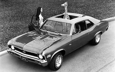 1972 Chevrolet Nova Factory Photo ua3826-DNLCPO