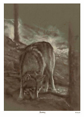 Journey, OR-7, Limited Edition Wolf Print, Wolves, 25% Donated to CWC