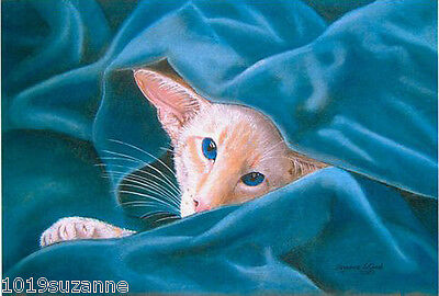 Large Ltd Ed Redpoint Siamese Cat Painting Print From Original  Suzanne Le Good