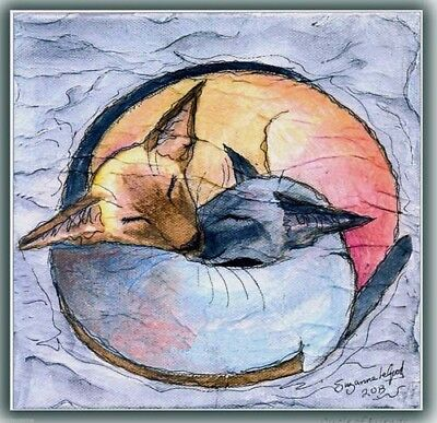 Large Sleeping Siamese Cat  Painting Print From Original By Suzanne Le Good
