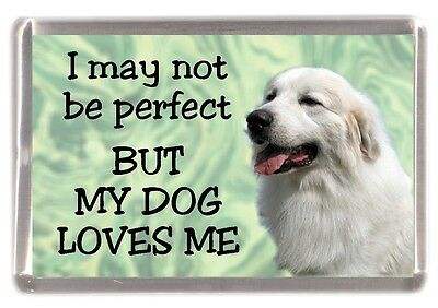 "Pyrenean Mountain Dog Fridge Magnet ""I may not be perfect BUT ...."" by Starprint"