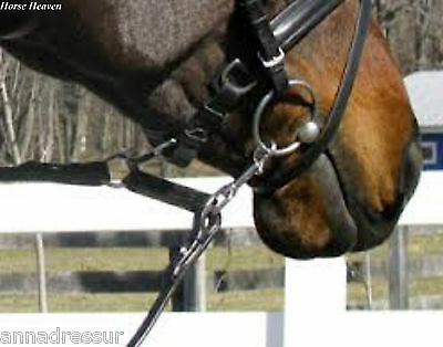 Harry Dabbs Dragonfly Rein: Assists Straightness, Balance, Contact & Carriage