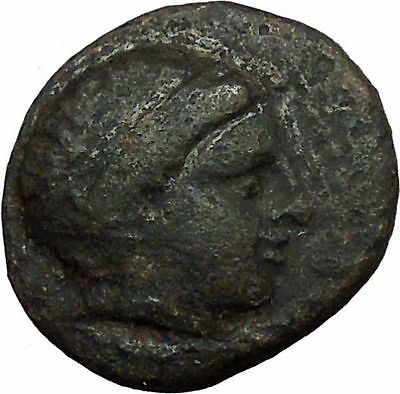 Alexander III  The Great  336BC Ancient Greek Coin  APOLLO Healer HORSE  i34529