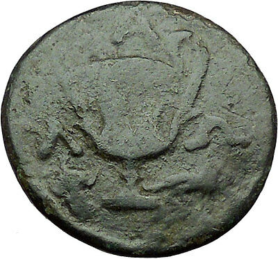 Alopekonnesos in Thrace 300BC Dionysus & Kantharos Ancient Greek Coin i34375