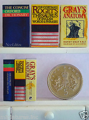 3 DOLLS HOUSE MINIATURE REFERENCE BOOKS Dictionary - Thesaurus - Gray's Anatomy