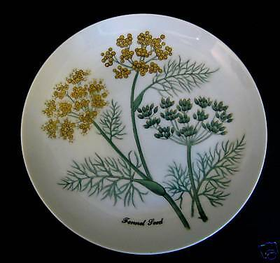 Shafford Plate Fennel Seed Picture Green Gold White