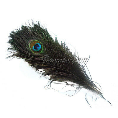 """Real Natural Peacock Tail Eye Feathers 10-12""""/25-30cm Wedding Party Decor DIY"""