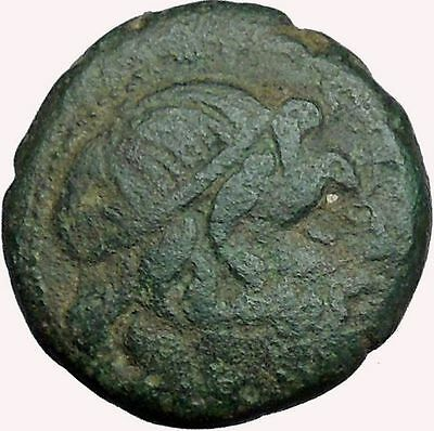 PELLA Macedonia 187BC  Rare Ancient  Greek Coin BULL POSEIDON  i33691