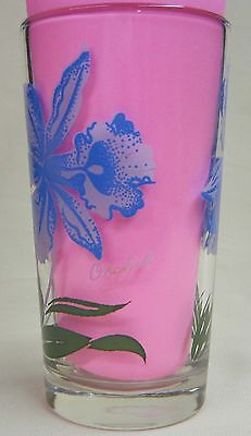 Orchid Peanut Butter Glass Glasses Drinking Kitchen Mauzy 77-4