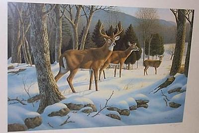 Golden Moment - Deer Hunting S/N Art Print by Louque