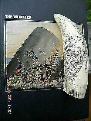 "Scrimshaw Sperm whale tooth RESIN REPLICA ""CONSTITUTION CAPTURING GUERRIERE"" 6"""