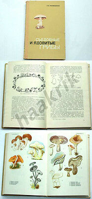 EATABLE AND POISONOUS MUSHROOMS. HANDBOOK - Russian language, BELARUS 1967