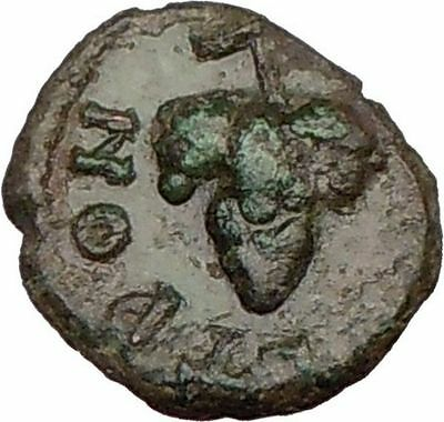 NICOPOLIS ad ISTRUM Roman Senate Dionysus Grapes Rare Ancient Coin  i22598
