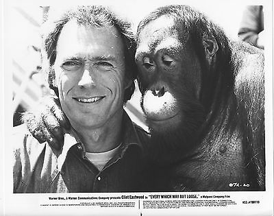 EVERY WHICH WAY BUT LOOSE original photo CLINT EASTWOOD/ORANGUTAN movie bw still