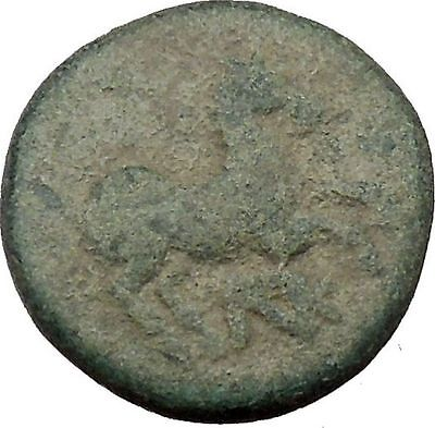 Maroneia in Thrace 400BC Original Ancient Greek Coin Horse Vine Grapes  i37011