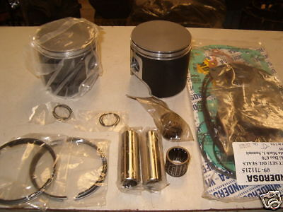 SKIDOO ROTAX 670 Ho Summits Etc  top End Engine Rebuild Kit  Pistons/gaskets/bear