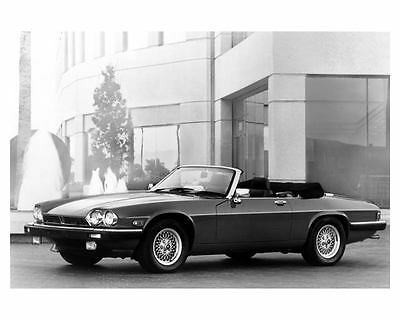 1989 Jaguar XJS Convertible Automobile Photo Poster zuc5486