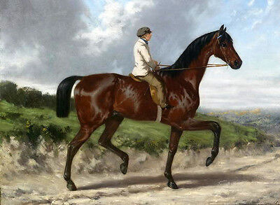Huge Oil painting portraits horseman young man on red horse in landscape canvas
