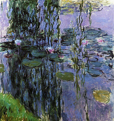 Dream-art art Oil painting Claude Monet - Water-Lilies flowers in pond no framed