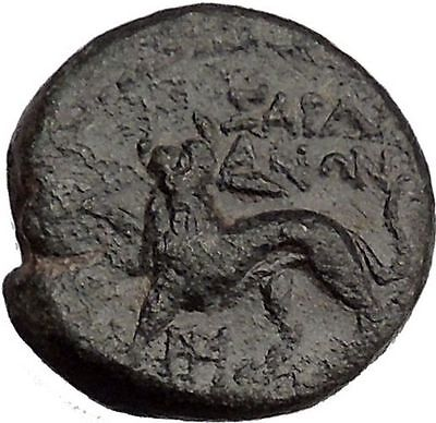 Sardes in LYDIA 133BC Dionysus & Panther Authentic Ancient Greek Coin i37708