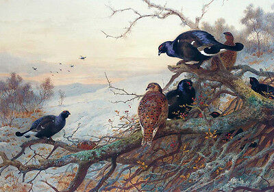 Huge oil painting nice birds on branch in landscape handpainted free shipping