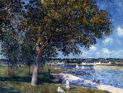 Stunning Oil painting Alfred Sisley - Walnut Tree in a Thomery Field by river