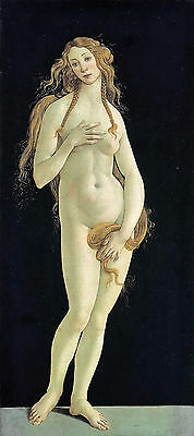 Stunning Oil painting Salome Guido Reni - Naked nude fairy young girl Venus