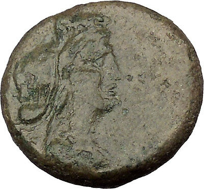 Hybla Megala in Sicily 210BC Hyblaia Modius Dionysus Panther Greek Coin i38058