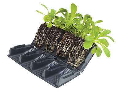 8 Books (32 Cells) Deep 12cm Rootrainers Root Trainers: For stronger plants