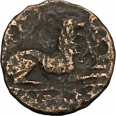 KASSANDER killer of Alexander's the Great son Greek Coin Lion  Hercules  i38643