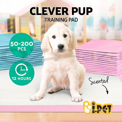 iPET Puppy Pet Dog Indoor Cat Toilet Training Pads Absorbent Thin 60X60cm