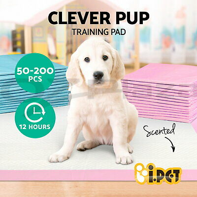 i.Pet Puppy Pet Dog Indoor Cat Toilet Training Pads Absorbent Thin 60X60cm