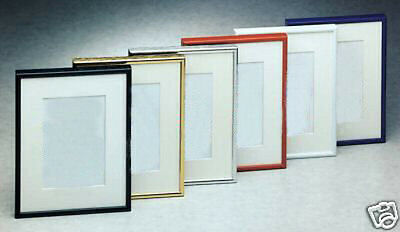 Metal Picture Frame 24 x 43  with mat  Wholesale