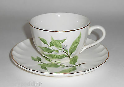 W. S. George Pottery China B8760 Floral Cup/Saucer Set! MINT