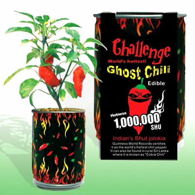 Magic Plant In A Can Worlds Hottest Ghost Chili Pepper Bhut Jolokia DIY Grow Kit