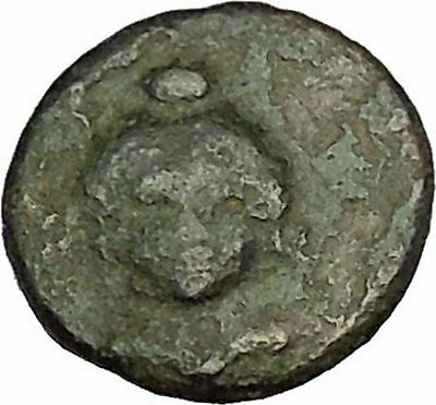 LAOS in LUCANIA 3rd Century BC Crows Demeter Facing Ancient Greek Coin  i40125